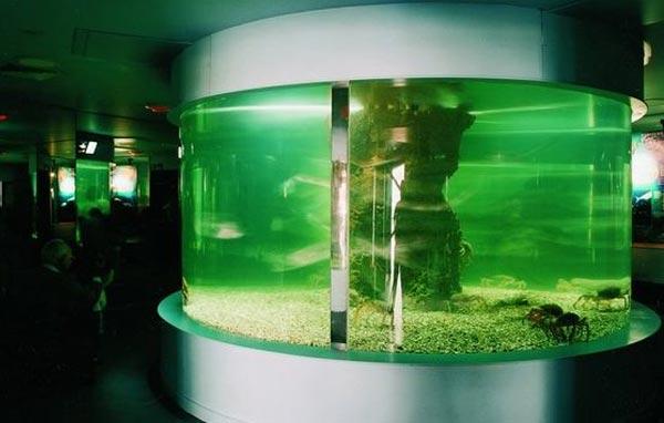 Tanques para acuarios - Sistemas y materiales
